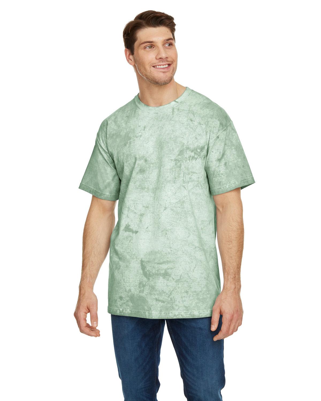 Comfort Colors Adult Heavyweight Color Blast T-Shirt FERN