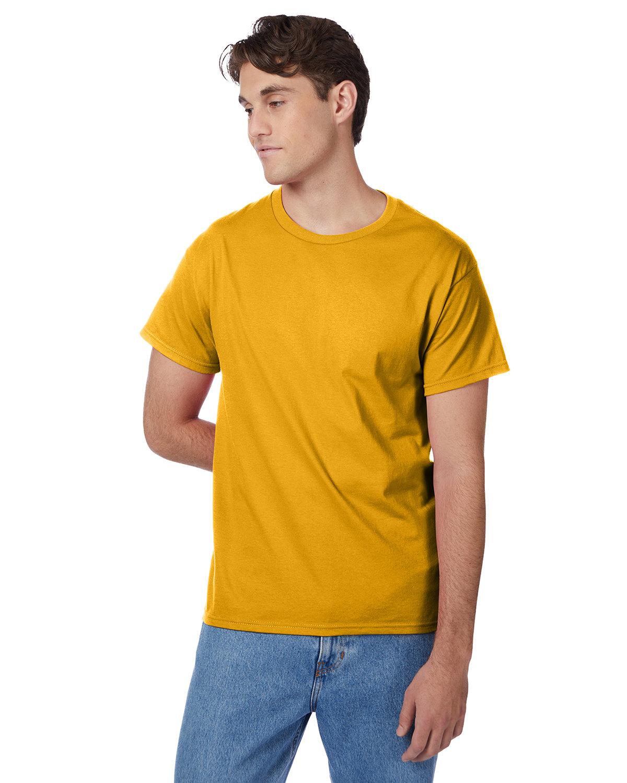 Hanes Men's Authentic-T T-Shirt GOLD