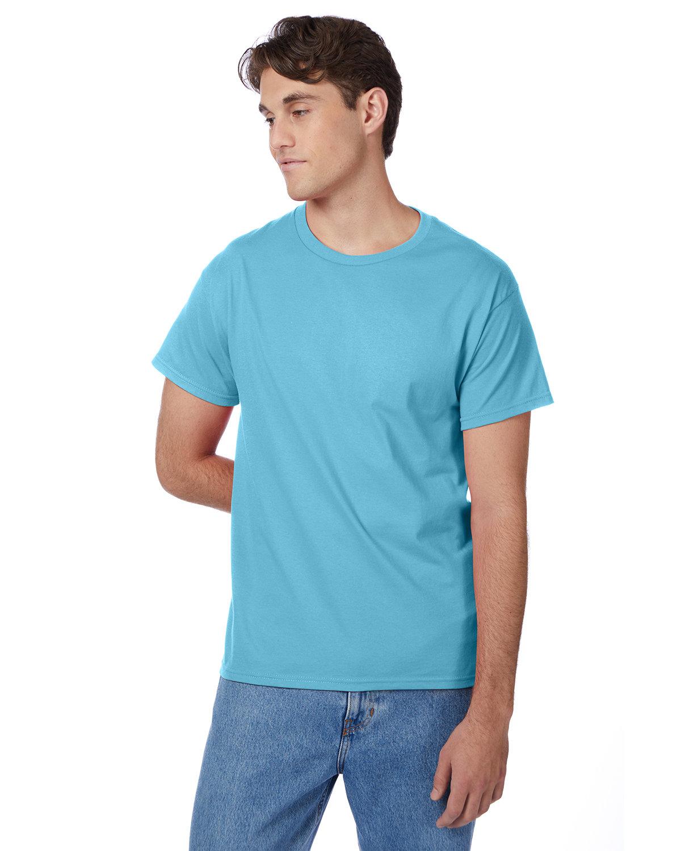 Hanes Men's Authentic-T T-Shirt BLUE HORIZON