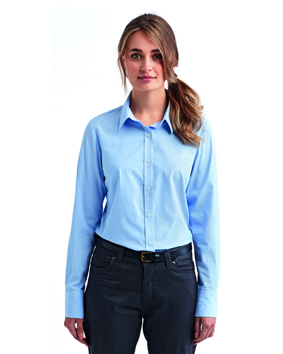 Artisan Collection by Reprime Ladies' Microcheck Gingham Long-Sleeve Cotton Shirt LT BLUE/ WHITE